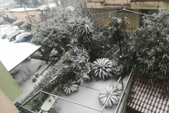 Melito di Napoli nevicata 3 26-02-18