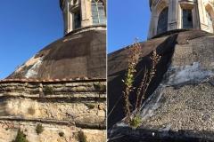 Melito-Parrocchia-Santa-Maria-delle-Grazie-22