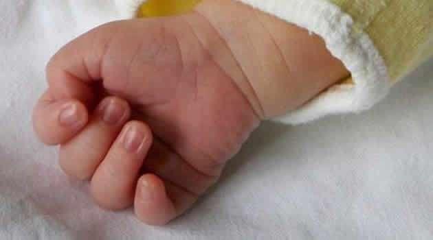 coronavirus neonato infetto